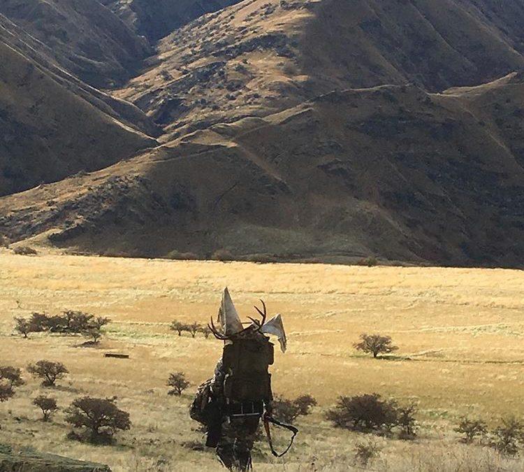 Hunting Hells Canyon